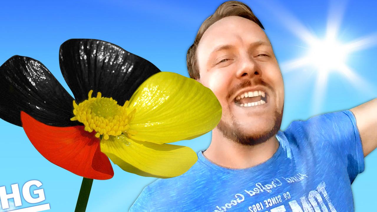 HOFFNUNG – Kommt die neue deutsche Blüte?