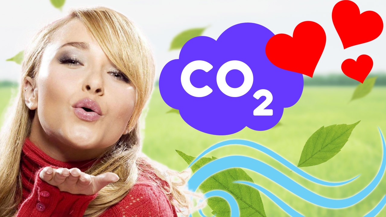 CO2 aus Deutschland = ein Hauch von Nichts ♥